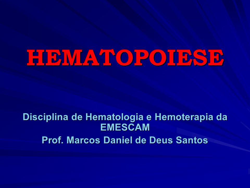 HEMATOPOIESE Disciplina de Hematologia e Hemoterapia da EMESCAM