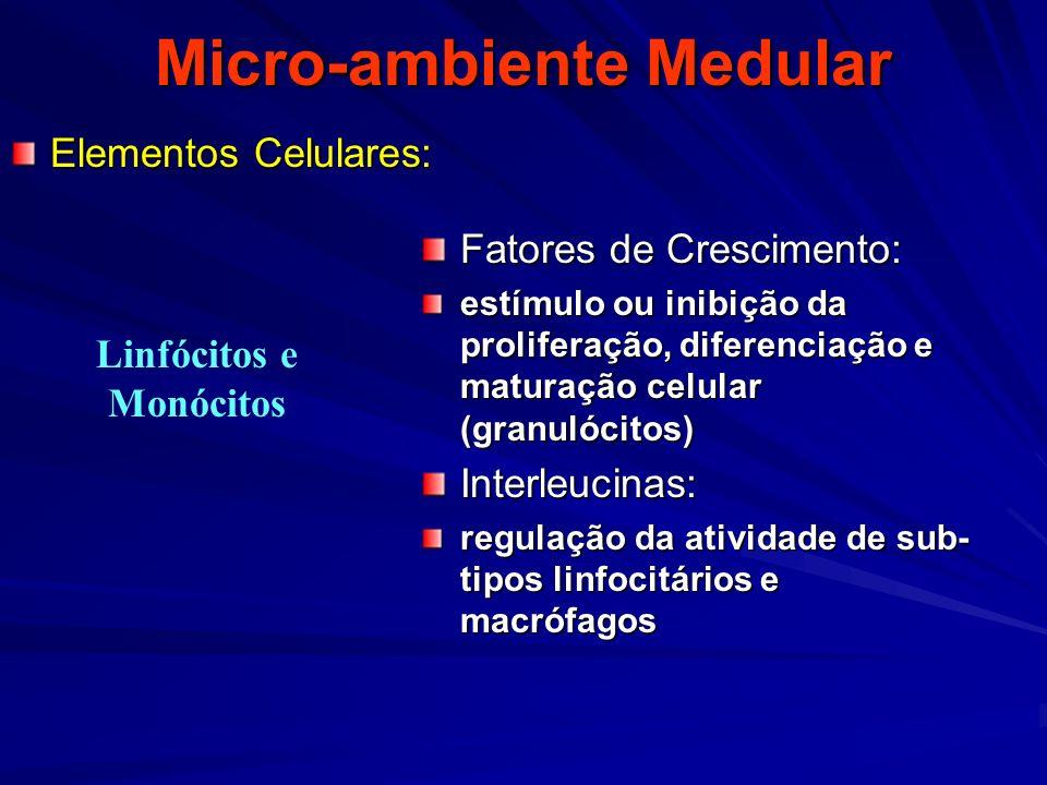 Micro-ambiente Medular
