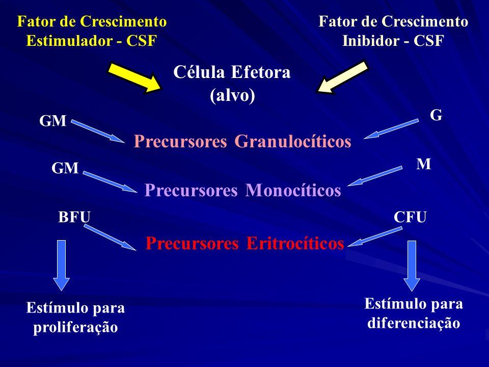 Precursores Granulocíticos