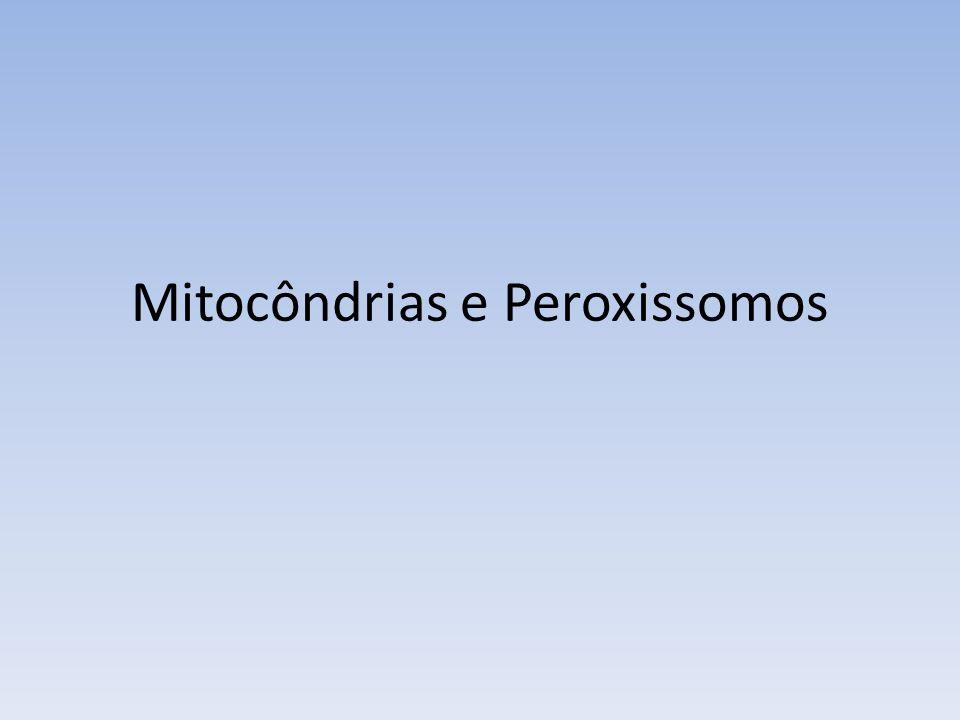 Mitocôndrias e Peroxissomos