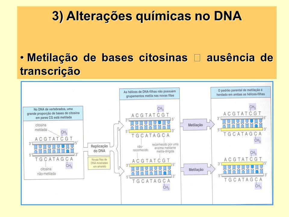 3) Alterações químicas no DNA