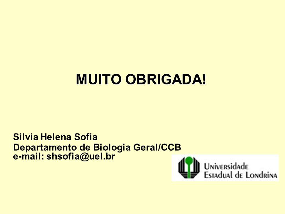 MUITO OBRIGADA! Silvia Helena Sofia Departamento de Biologia Geral/CCB