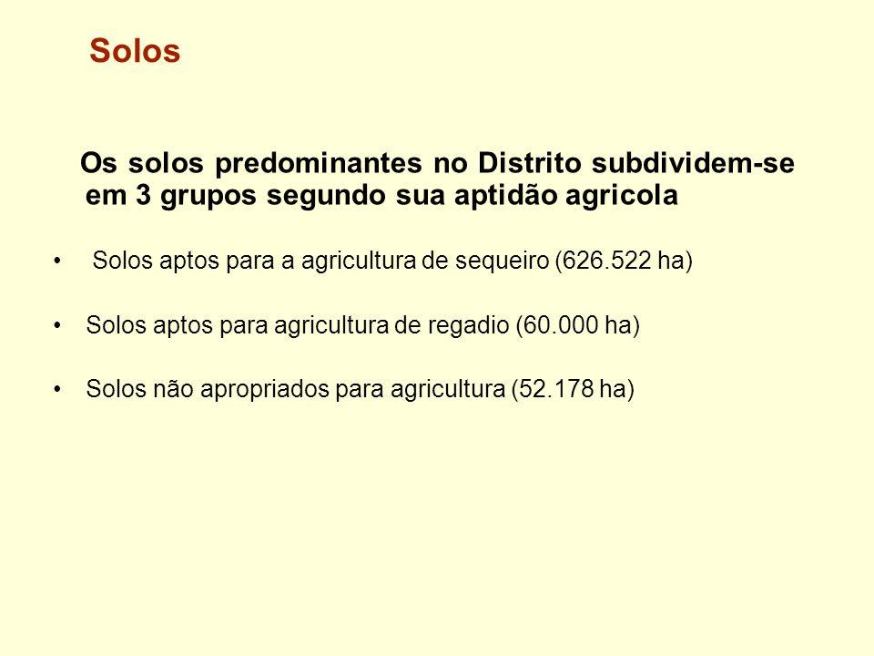 SolosOs solos predominantes no Distrito subdividem-se em 3 grupos segundo sua aptidão agricola.