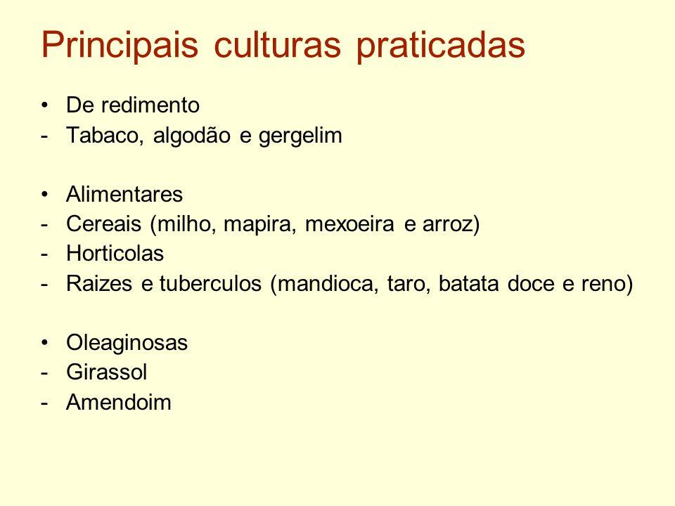 Principais culturas praticadas