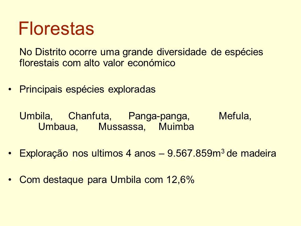 Florestas No Distrito ocorre uma grande diversidade de espécies florestais com alto valor económico.