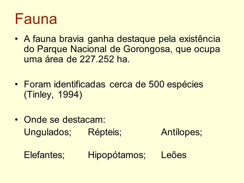 FaunaA fauna bravia ganha destaque pela existência do Parque Nacional de Gorongosa, que ocupa uma área de 227.252 ha.