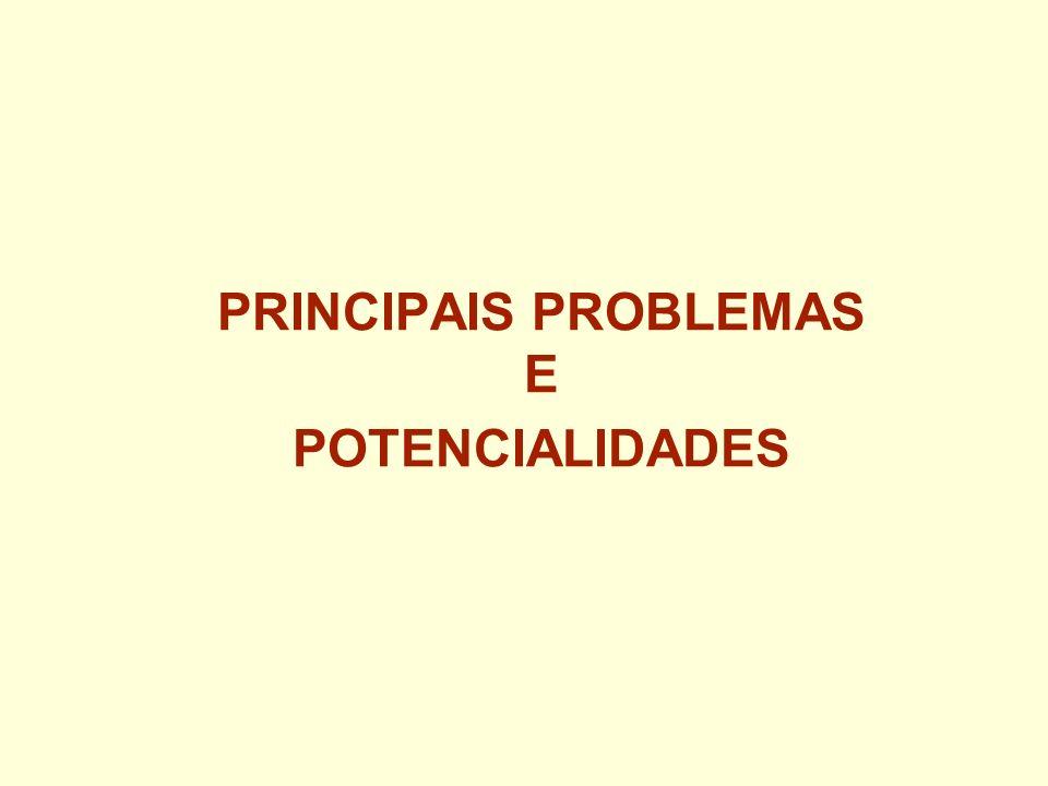 PRINCIPAIS PROBLEMAS E POTENCIALIDADES