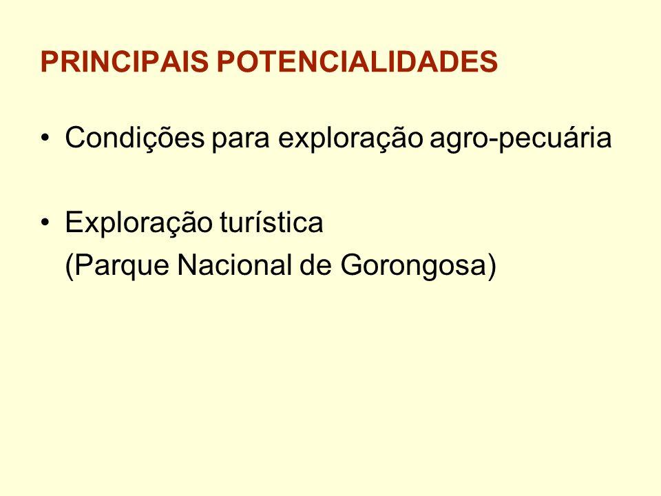 PRINCIPAIS POTENCIALIDADES