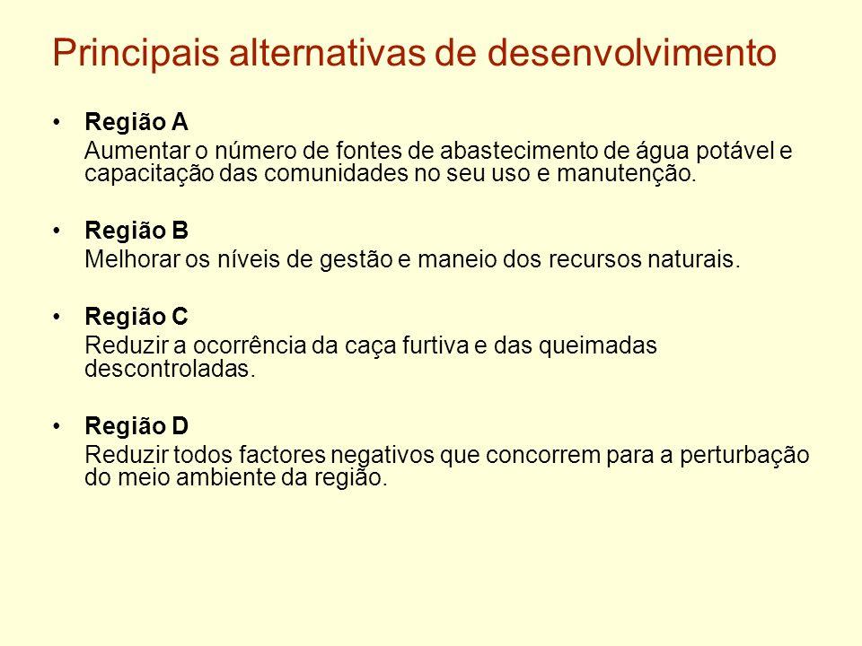 Principais alternativas de desenvolvimento