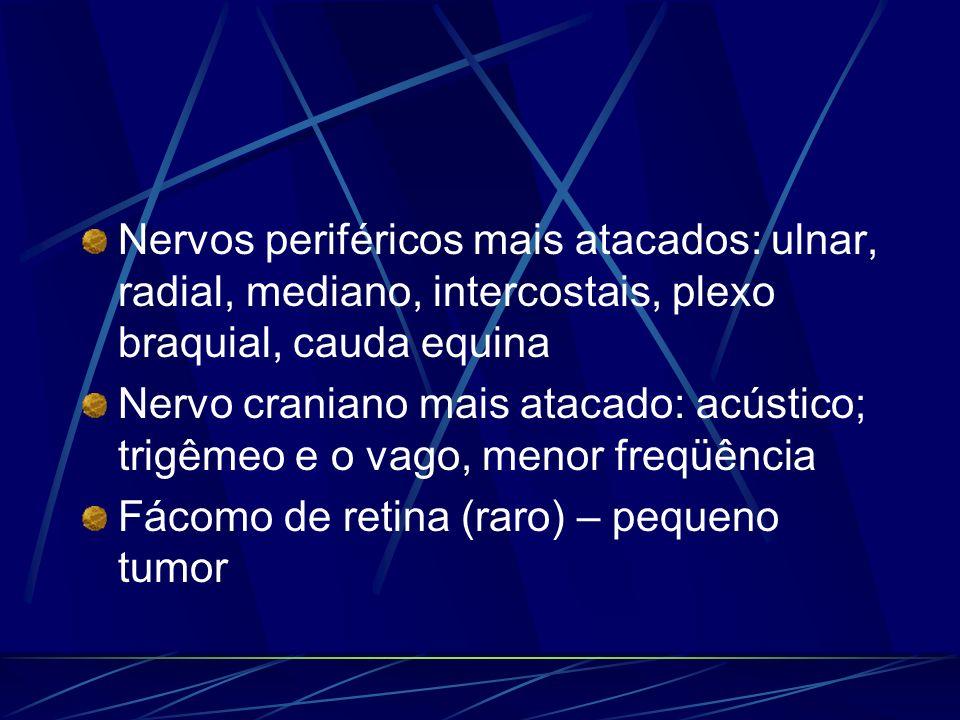 Nervos periféricos mais atacados: ulnar, radial, mediano, intercostais, plexo braquial, cauda equina