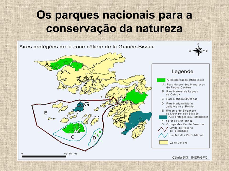 Os parques nacionais para a conservação da natureza