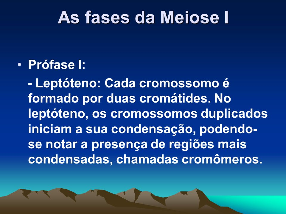 As fases da Meiose I Prófase I: