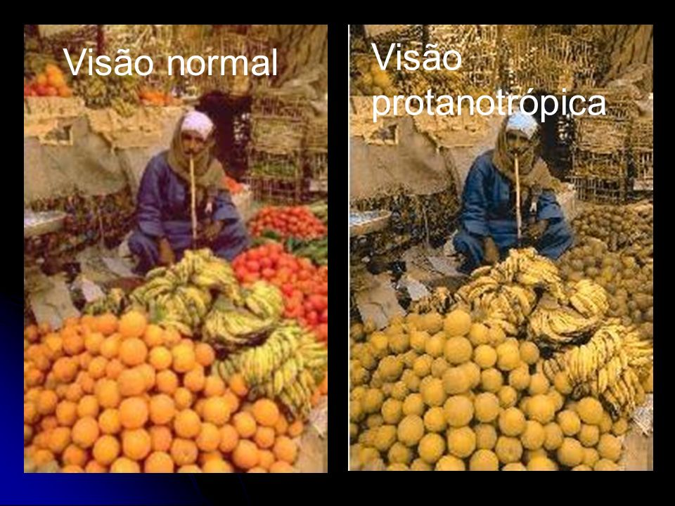Visão protanotrópica Visão normal