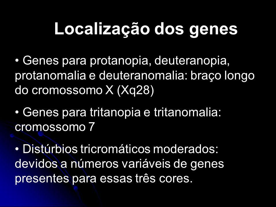 Localização dos genes Genes para protanopia, deuteranopia, protanomalia e deuteranomalia: braço longo do cromossomo X (Xq28)