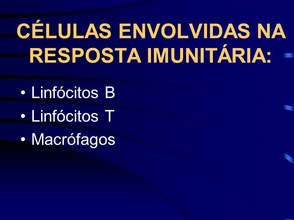 CÉLULAS ENVOLVIDAS NA RESPOSTA IMUNITÁRIA: