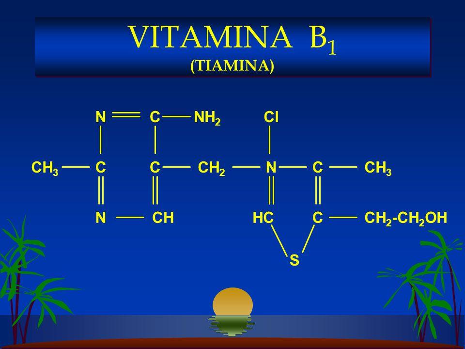 VITAMINA B1 (TIAMINA) CH3 NH2 C N CH CH2-CH2OH CH2 HC Cl S