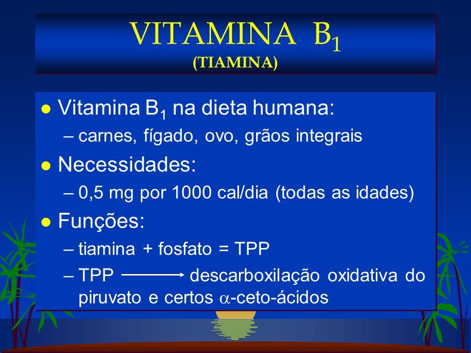 VITAMINA B1 (TIAMINA) Vitamina B1 na dieta humana: Necessidades: