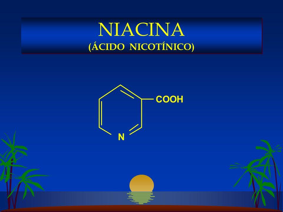 NIACINA (ÁCIDO NICOTÍNICO)