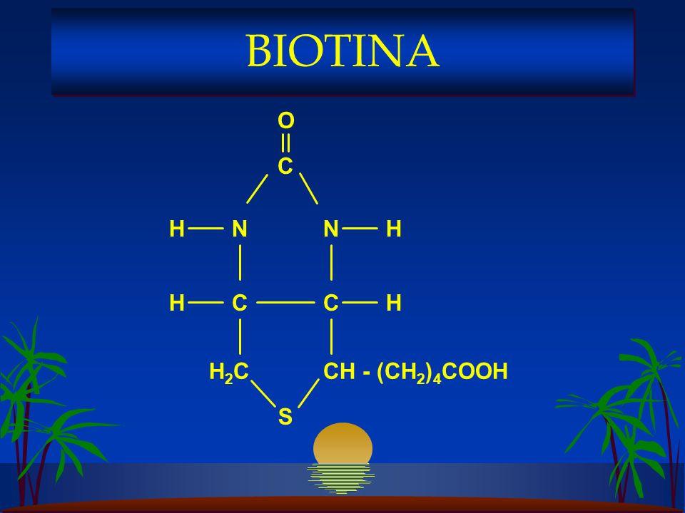 BIOTINA S C H2C N CH - (CH2)4COOH H O
