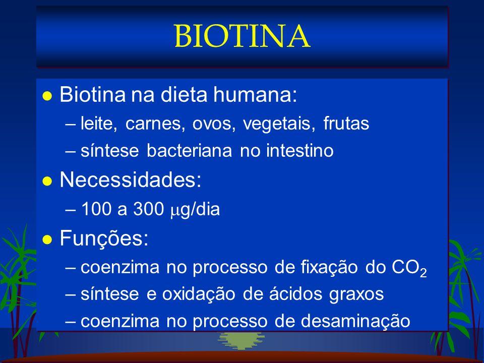 BIOTINA Biotina na dieta humana: Necessidades: Funções: