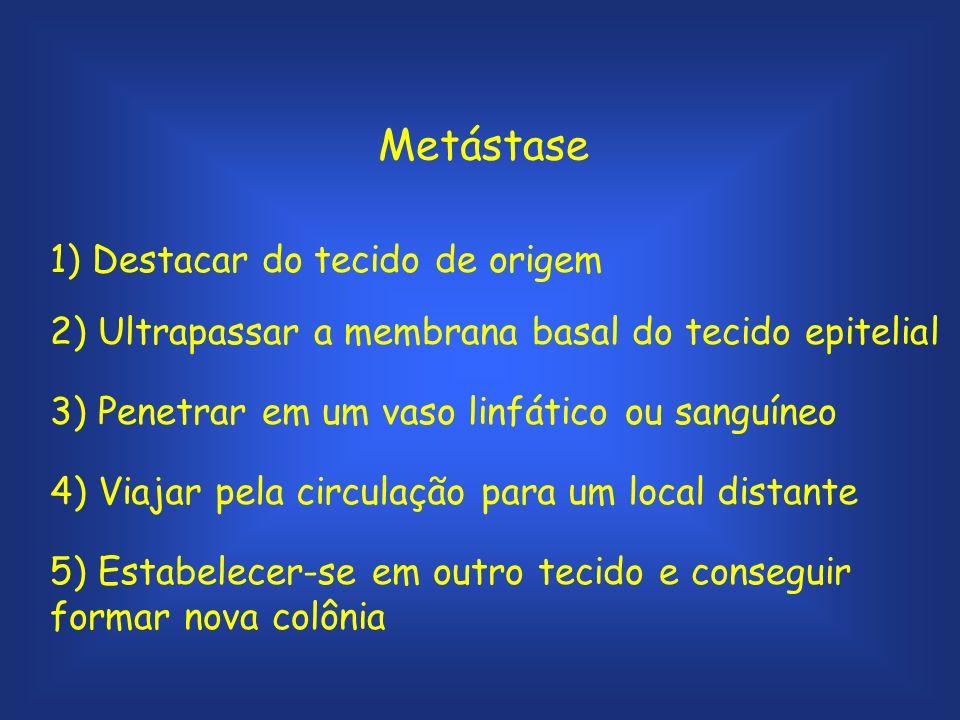 Metástase 1) Destacar do tecido de origem