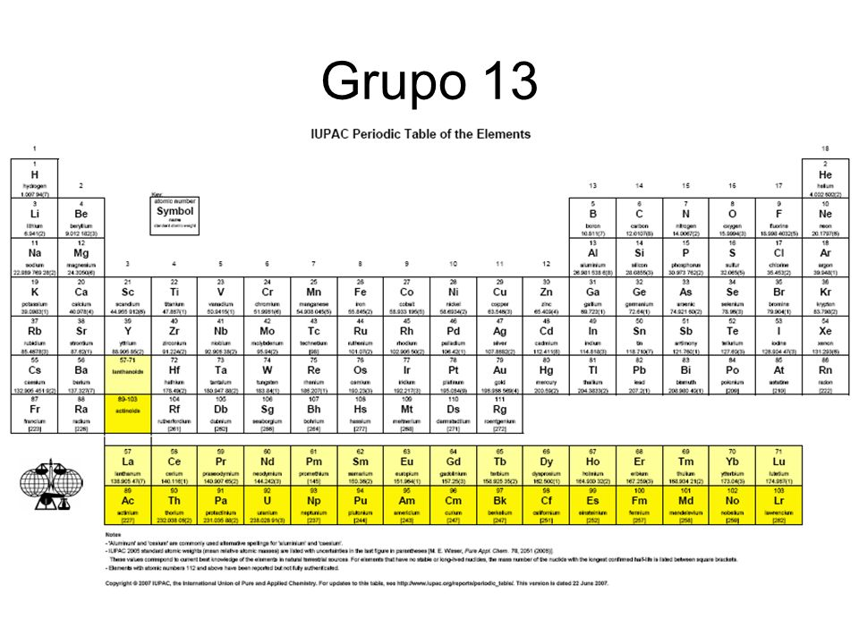 Grupo 13