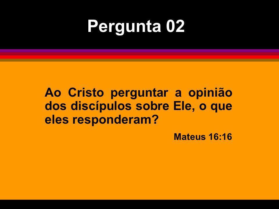 Pergunta 02Ao Cristo perguntar a opinião dos discípulos sobre Ele, o que eles responderam.