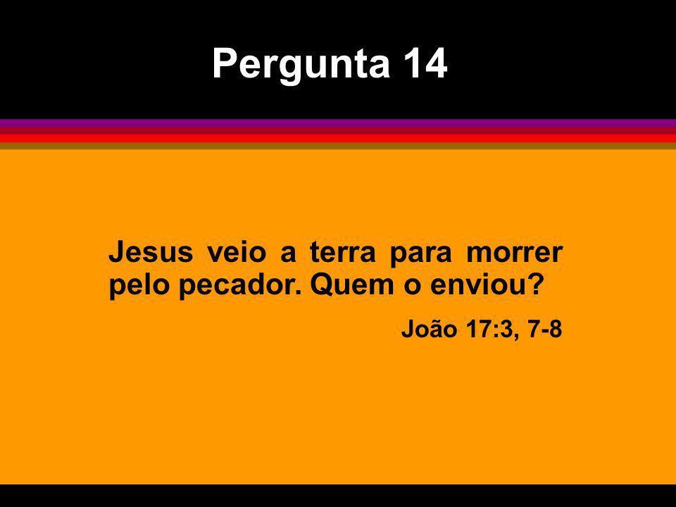 Pergunta 14 Jesus veio a terra para morrer pelo pecador. Quem o enviou João 17:3, 7-8
