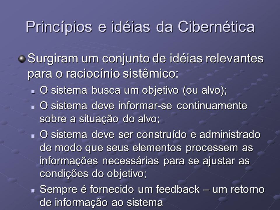 Princípios e idéias da Cibernética