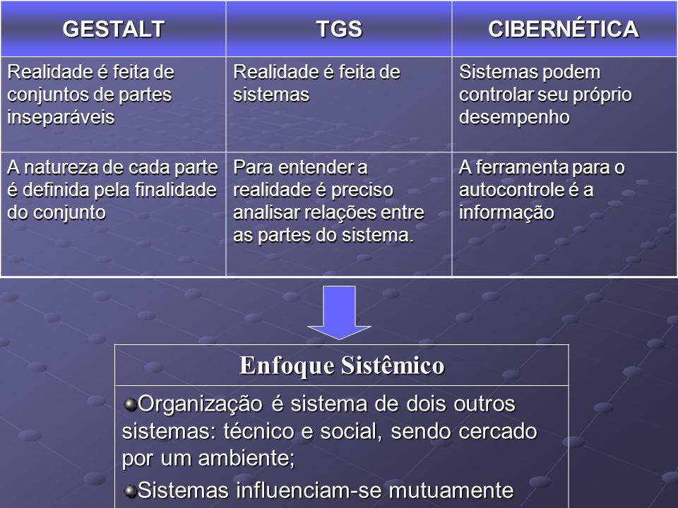 Enfoque Sistêmico GESTALT TGS CIBERNÉTICA