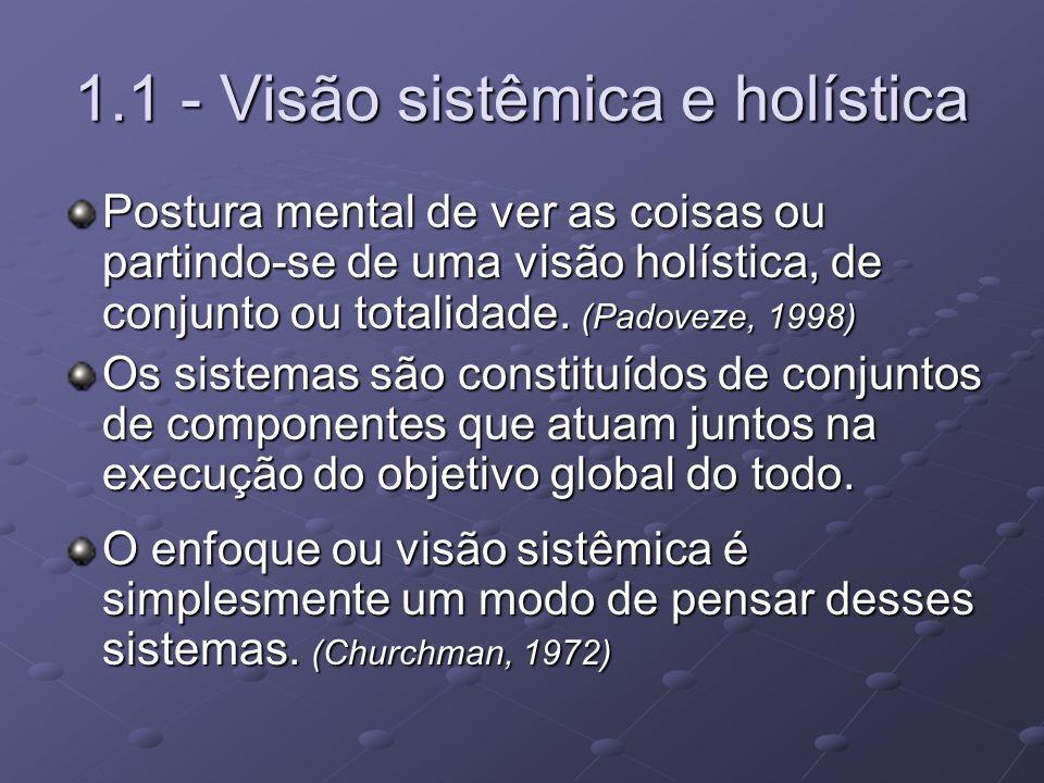 1.1 - Visão sistêmica e holística