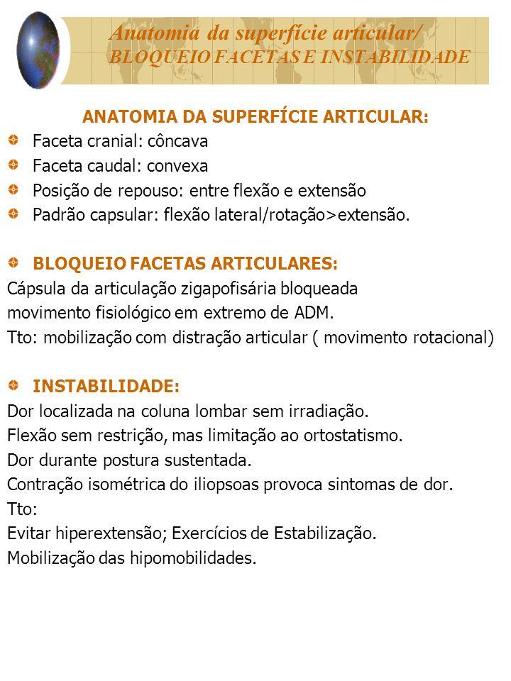 Anatomia da superfície articular/ BLOQUEIO FACETAS E INSTABILIDADE