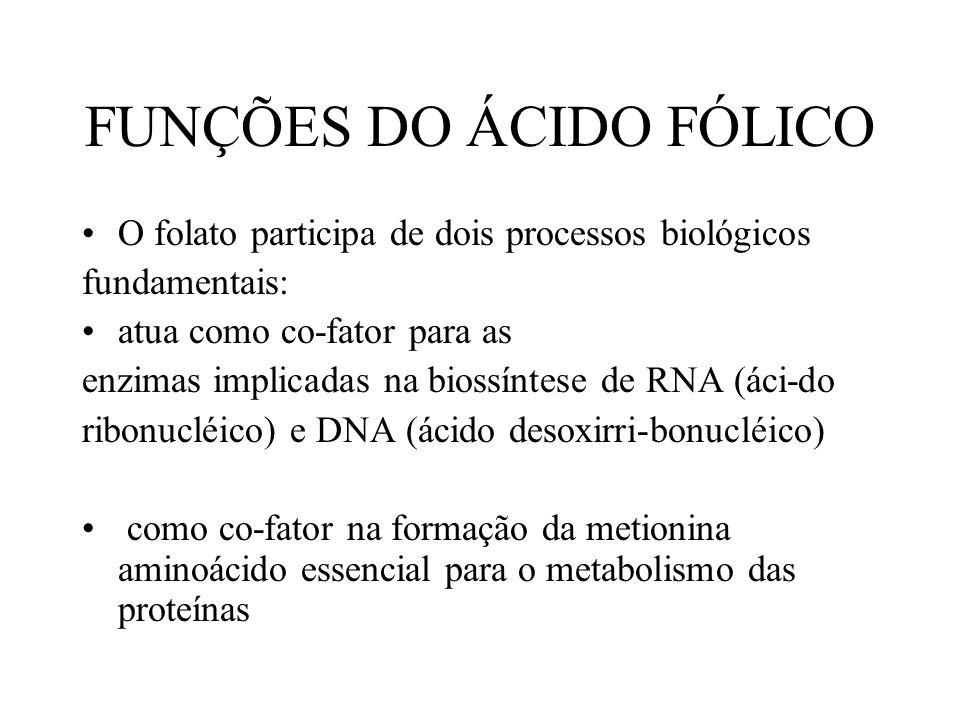 FUNÇÕES DO ÁCIDO FÓLICO