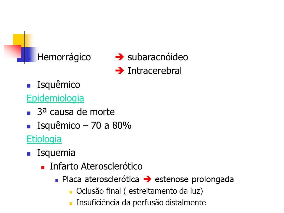 Hemorrágico  subaracnóideo  Intracerebral Isquêmico Epidemiologia
