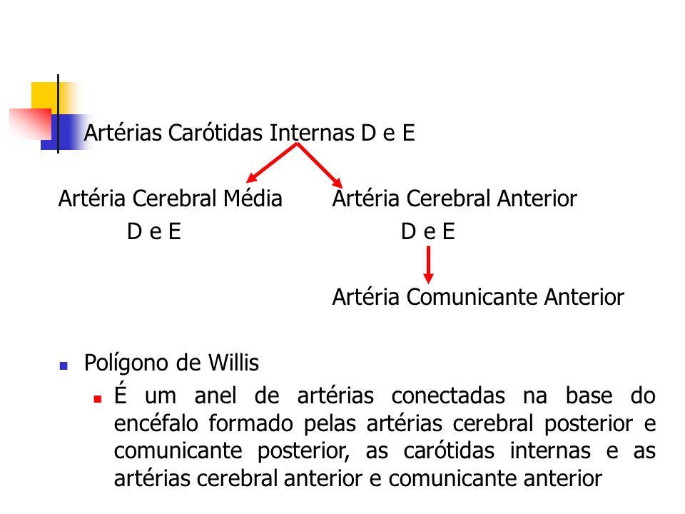 Artérias Carótidas Internas D e E