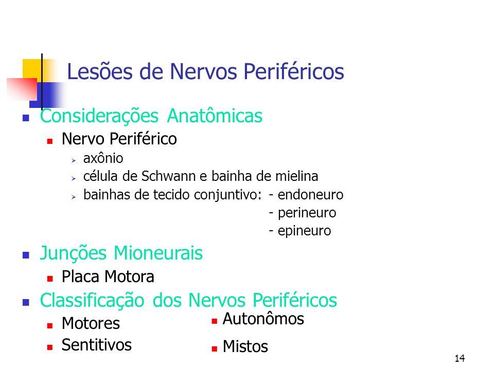 Lesões de Nervos Periféricos