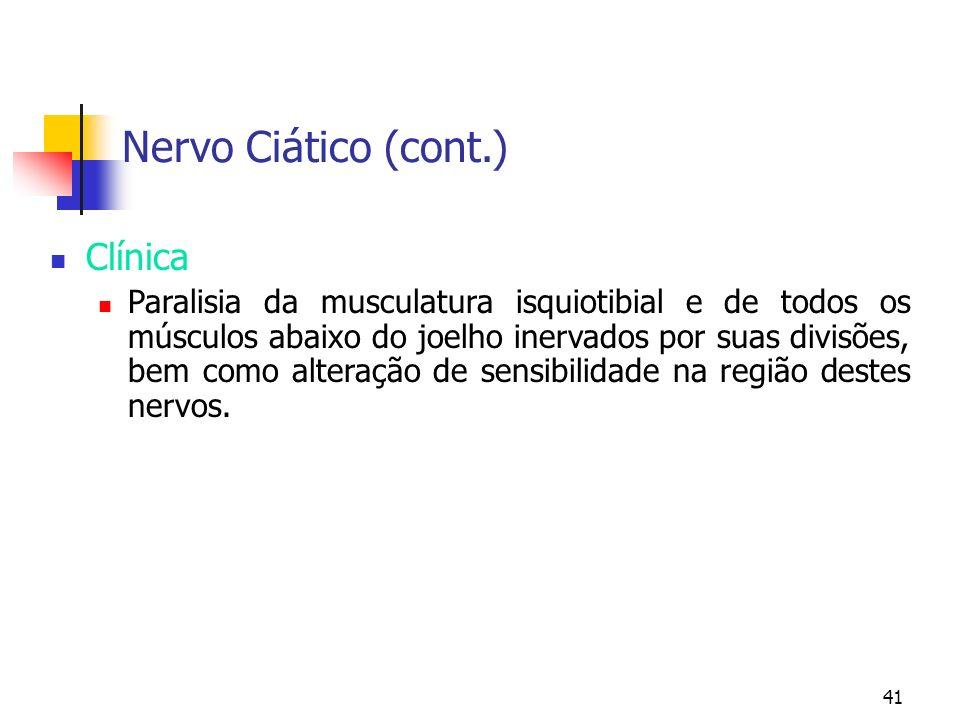 Nervo Ciático (cont.) Clínica