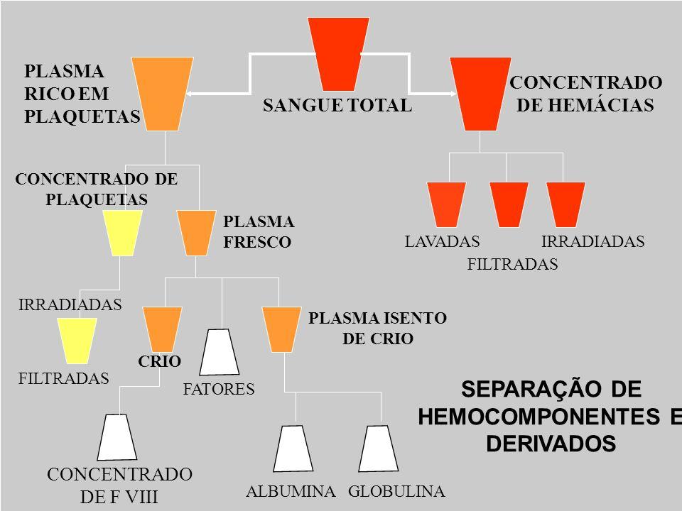 SEPARAÇÃO DE HEMOCOMPONENTES E DERIVADOS