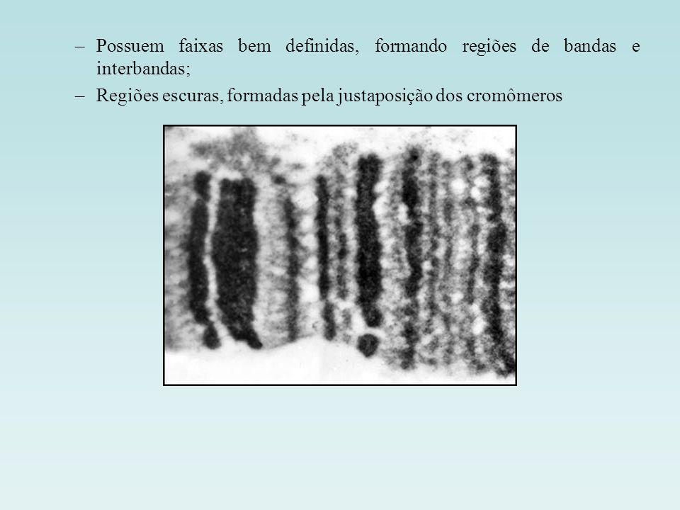 Possuem faixas bem definidas, formando regiões de bandas e interbandas;
