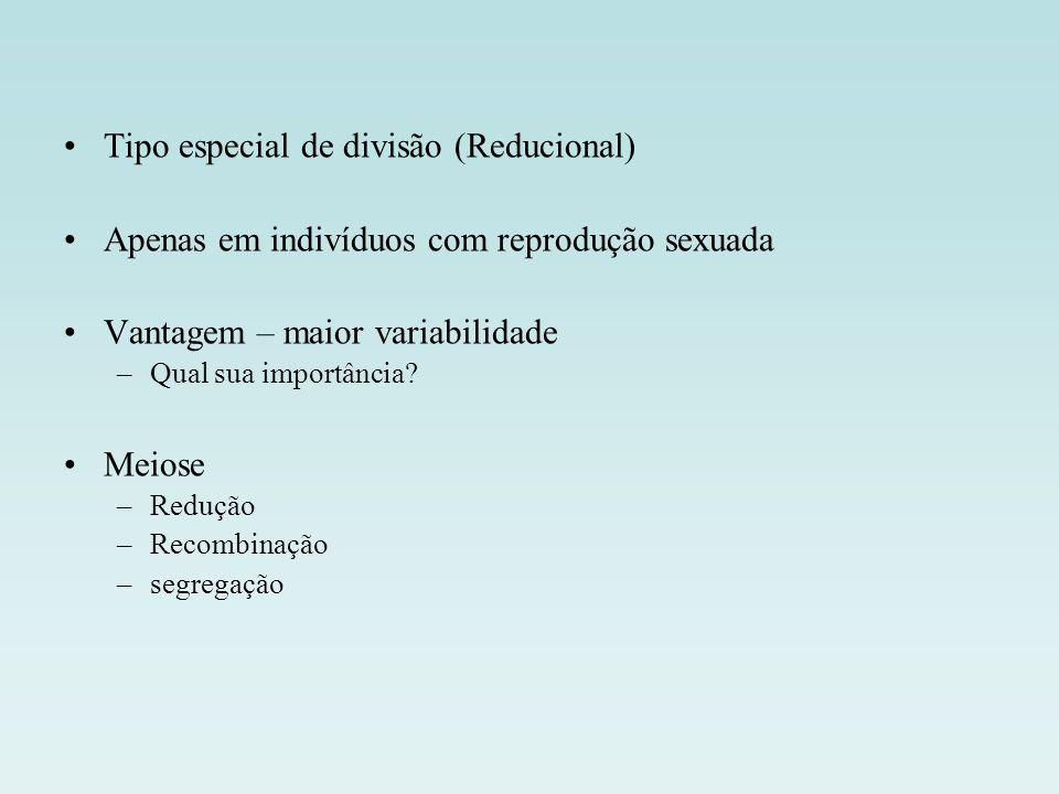 Tipo especial de divisão (Reducional)