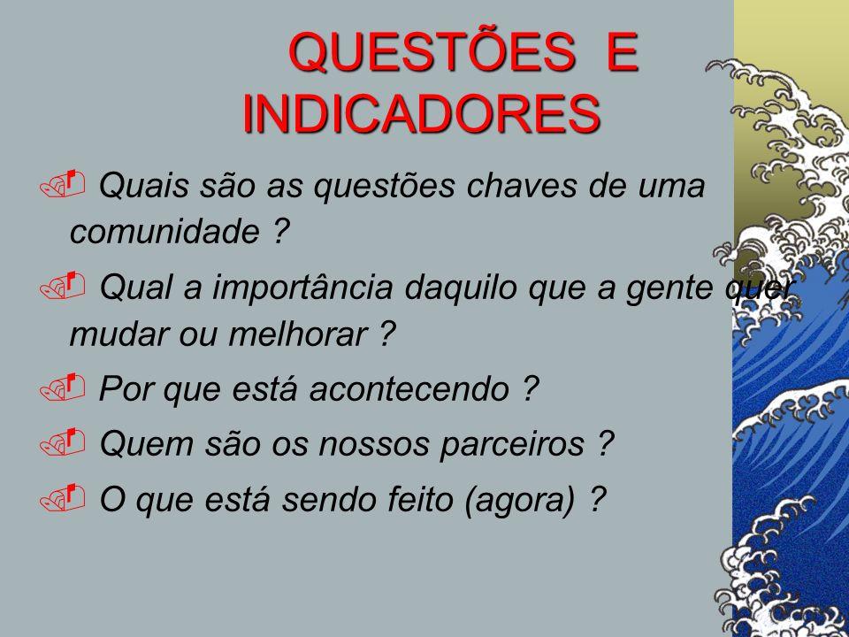 QUESTÕES E INDICADORES