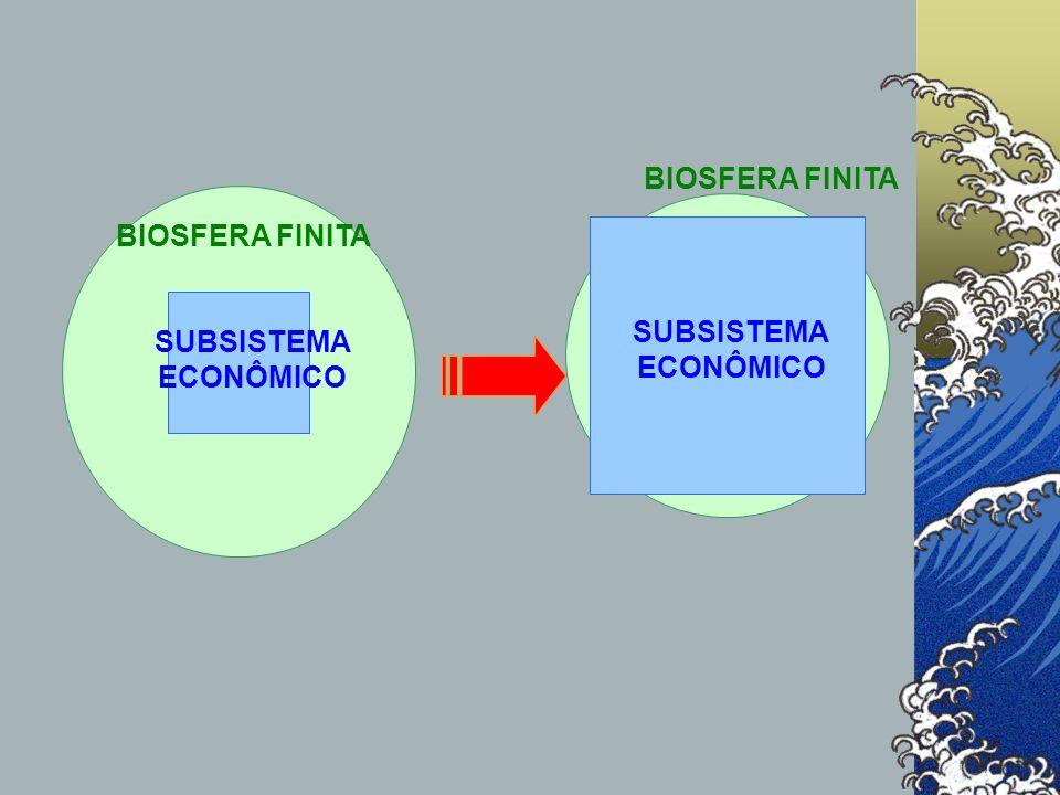SUBSISTEMA ECONÔMICO BIOSFERA FINITA BIOSFERA FINITA SUBSISTEMA ECONÔMICO