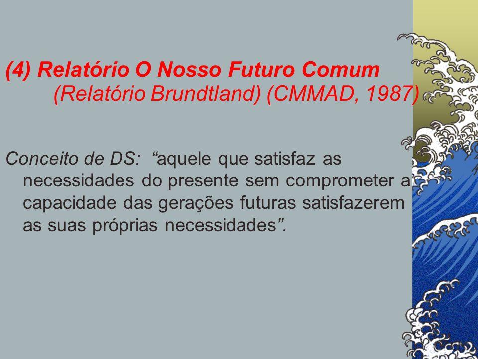 (4) Relatório O Nosso Futuro Comum