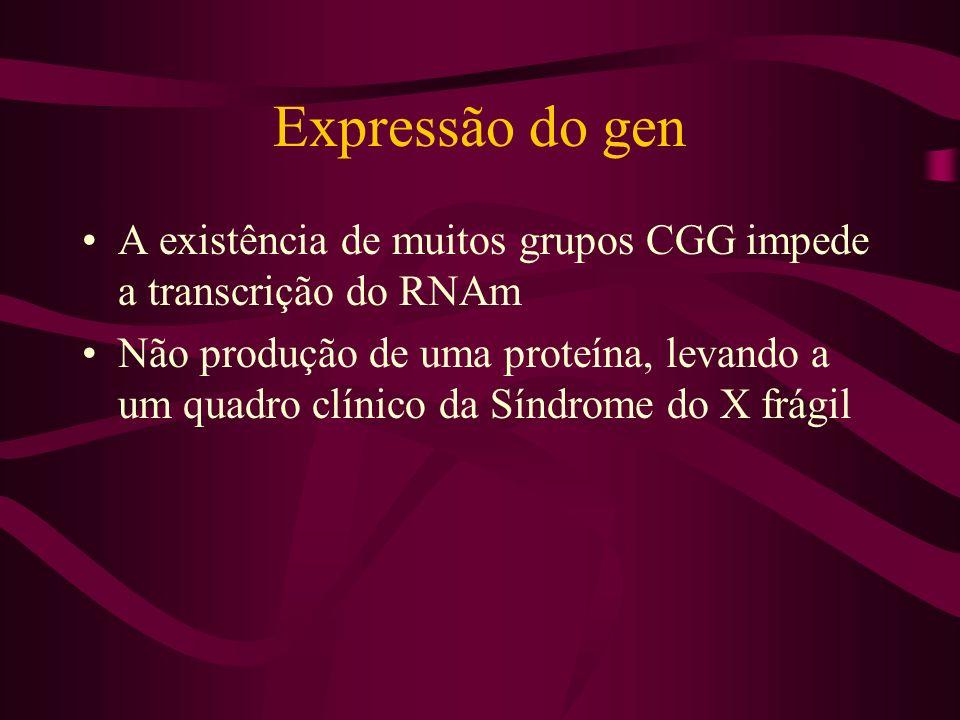Expressão do gen A existência de muitos grupos CGG impede a transcrição do RNAm.