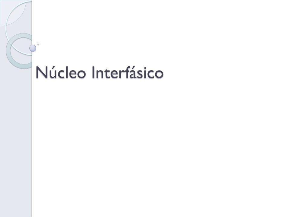Núcleo Interfásico