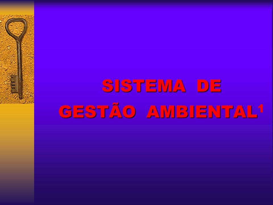 SISTEMA DE GESTÃO AMBIENTAL1