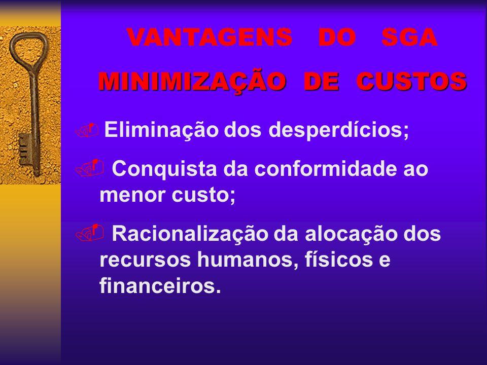 VANTAGENS DO SGA MINIMIZAÇÃO DE CUSTOS