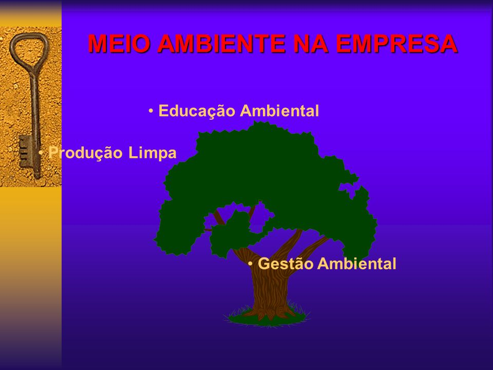 MEIO AMBIENTE NA EMPRESA