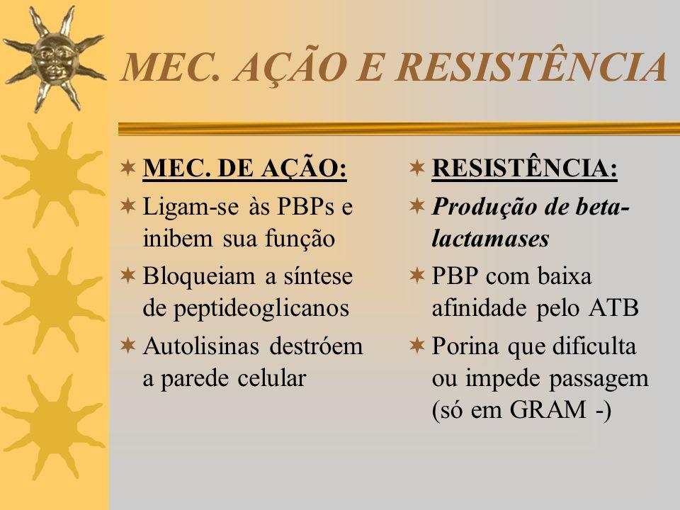 MEC. AÇÃO E RESISTÊNCIA MEC. DE AÇÃO: