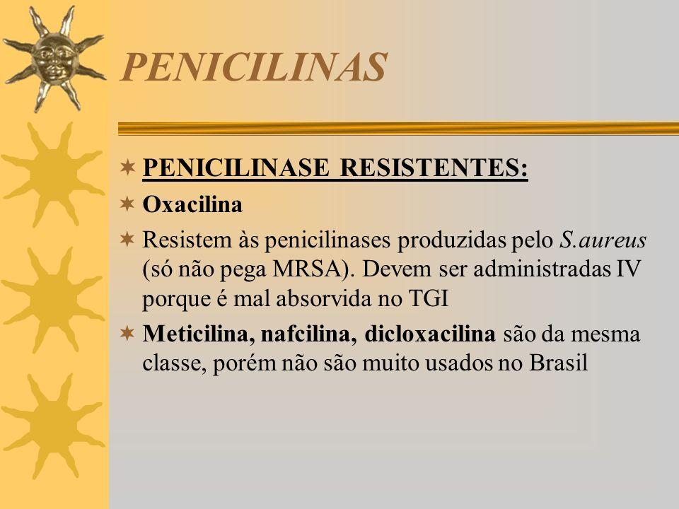 PENICILINAS PENICILINASE RESISTENTES: Oxacilina